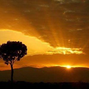 Ao nascer do Sol
